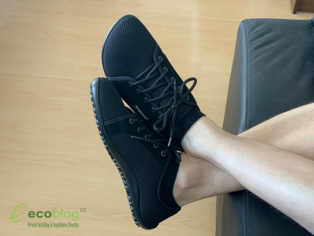 little shoes leguano