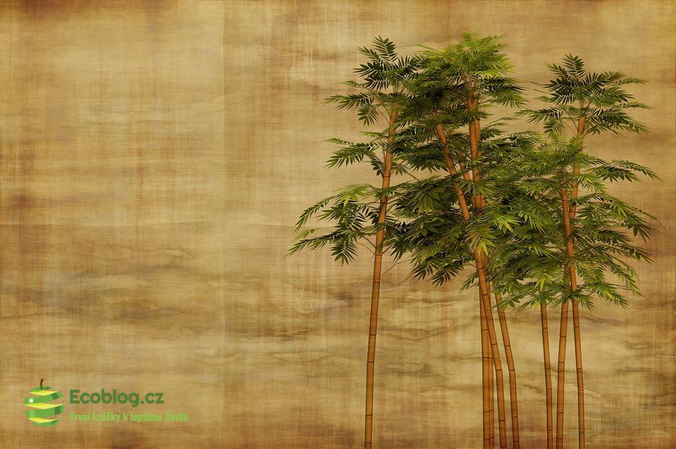 Bambusové příbory jako příklad využití obnovitelných zdrojů
