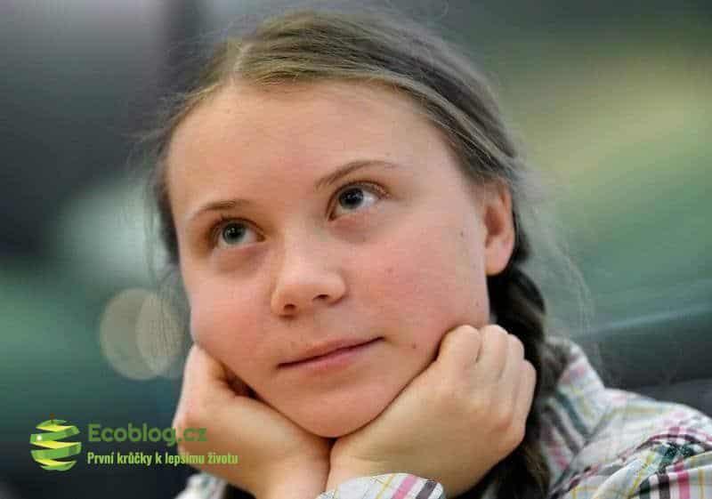 Výzva Grety Thunberg ke stávce