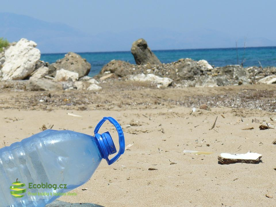 Jednorázové plasty ubližují mořským živočichům