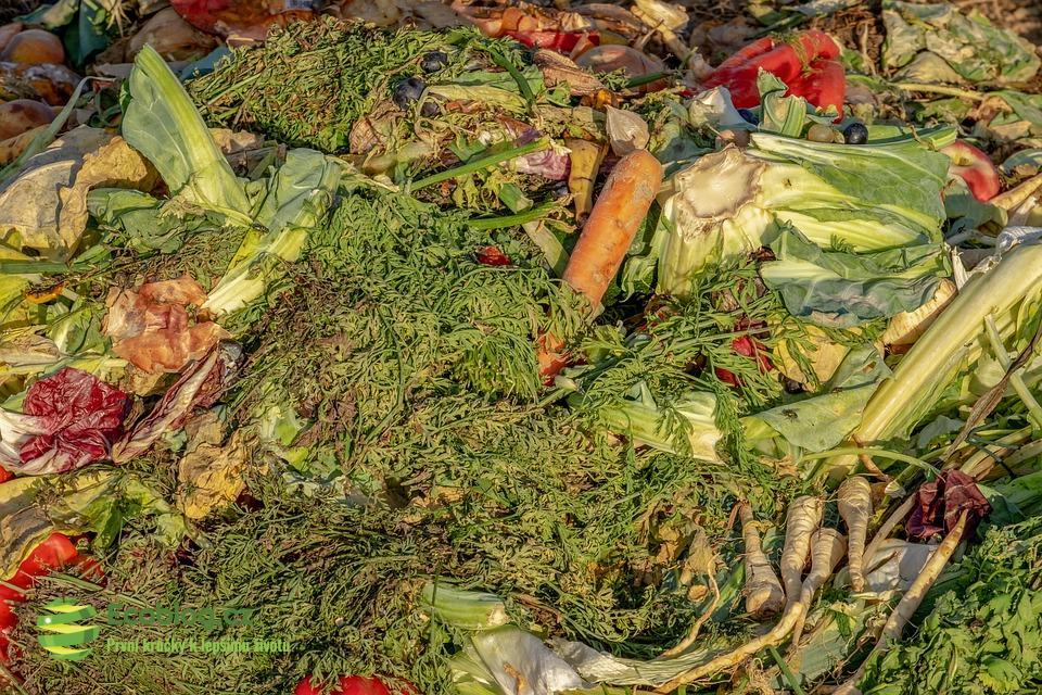 Kompostování na zahradě