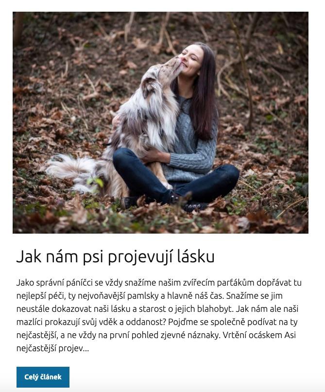 online psí škola blog