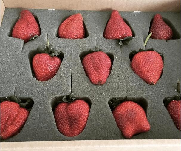 jahody po jedné